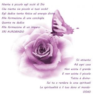 rosa e farfalla viola con testo