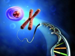 geni e cellula