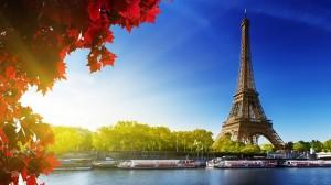 Paris transfer(1)
