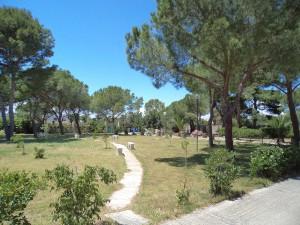 Giardino Villa Tecla