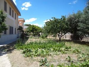 Orto Villa Tecla