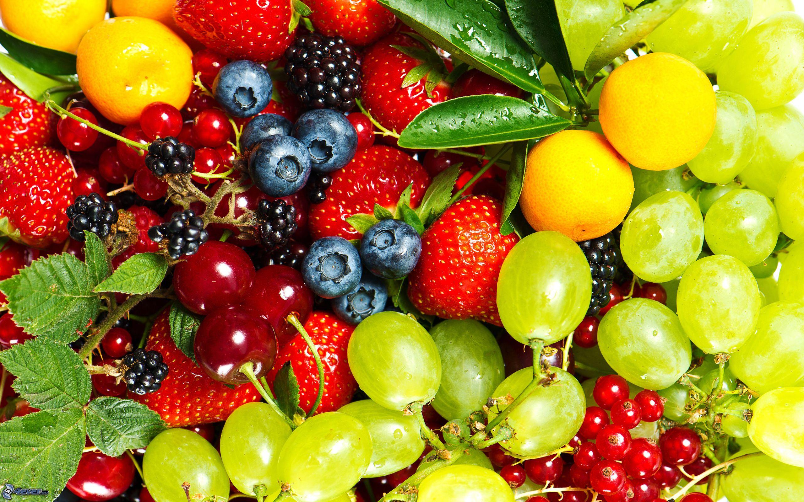 Adeguatezza nutrizionale dell'alimentazione a base vegetale