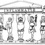 Infiammazione – Ricerca e Igiene Naturale, visione analoga