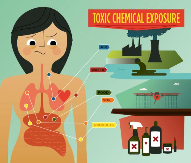 esposizione alle tossine ambientali