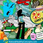 Proteggersi dalle tossine ambientali – I consigli del dottor Morse