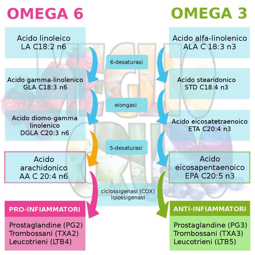 Conversione omega-3