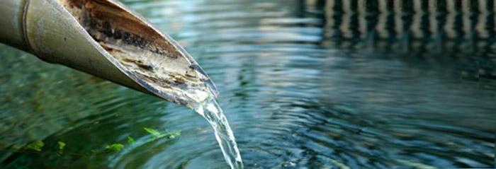 acqua e disintossicazione