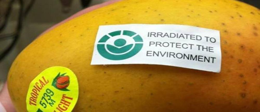 mango tra i cibi irradiati
